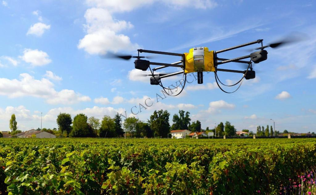 проведение мониторинга плодородия почв земель сельскохозяйственного назначения;
